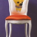 sedia cane1
